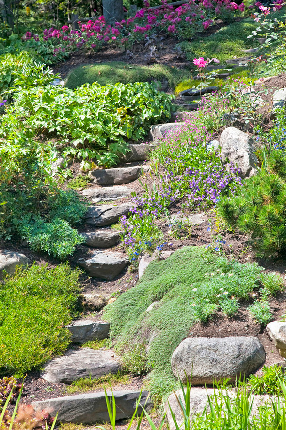 Rock Garden Stairs - Stock Photo - Images