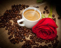 Wonderful cup of hot coffee and red rose - PhotoDune Item for Sale