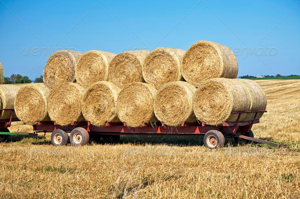 Hay Wagon - Stock Photo - Images