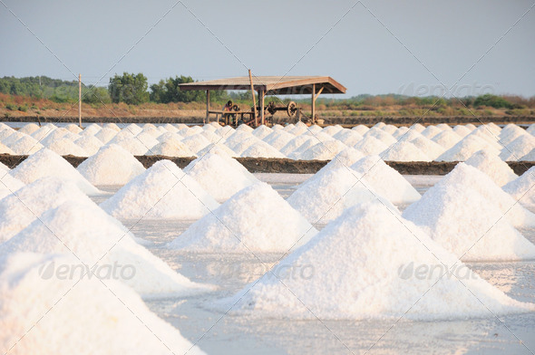 SALT FIELD - Stock Photo - Images