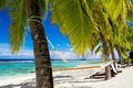 Hammock between palm trees on tropical beach - PhotoDune Item for Sale