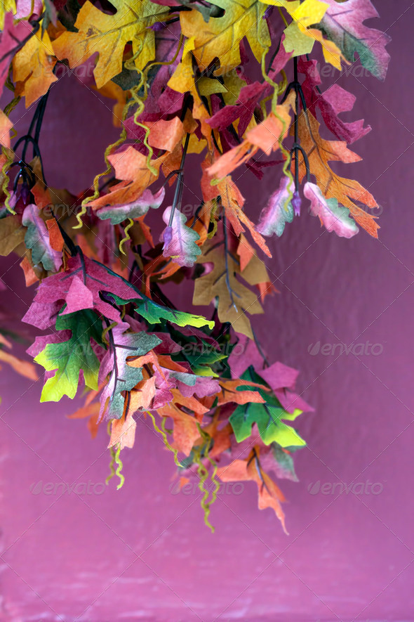 Artificial Leaves - Stock Photo - Images