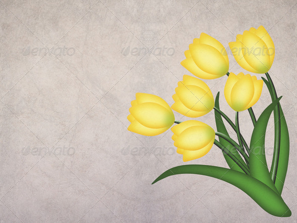 Yellow grunge tulip on textured background - Stock Photo - Images