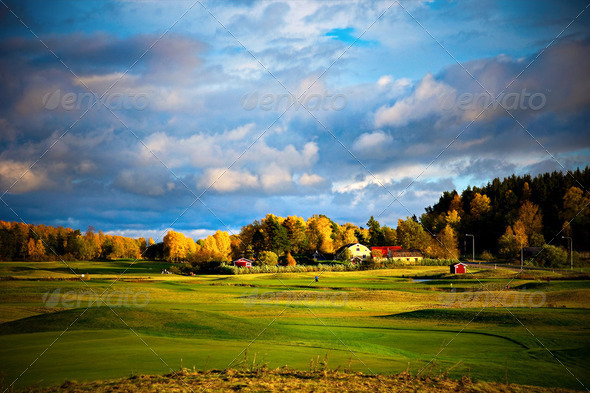 Golf course - Stock Photo - Images