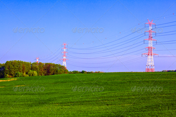 Summer landscape with electric poles - Stock Photo - Images