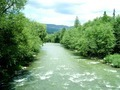 River in Carpathian mountains - PhotoDune Item for Sale