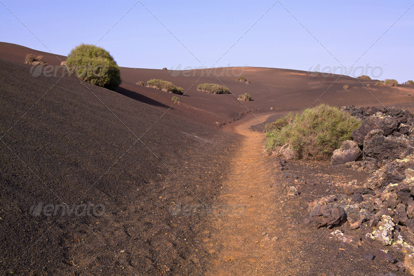 Path across volcanic park - Stock Photo - Images
