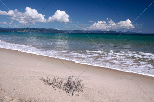 Coast line at Kuaotunu Bay - Stock Photo - Images