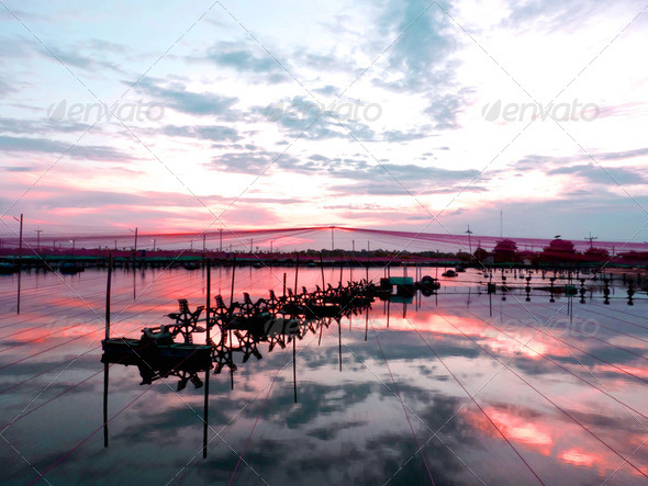 Sunset over Shrimp pond - Stock Photo - Images