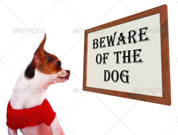 Beware Of The Dog Sign Showing Protection And Warning - Stock Photo - Images