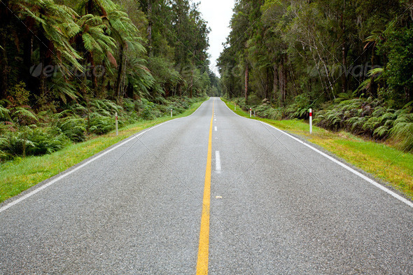 Empty road stretching out - Stock Photo - Images