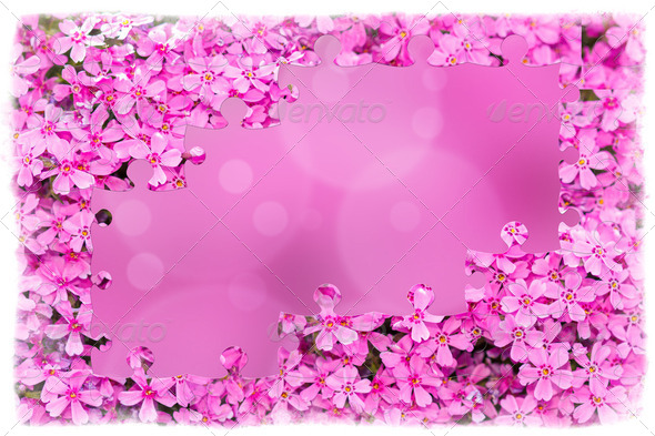 pink flower frame with puzzle of flowers - Stock Photo - Images