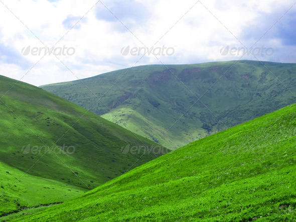 The high green hill - Stock Photo - Images