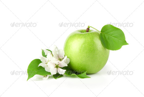 Green apple on white background - Stock Photo - Images