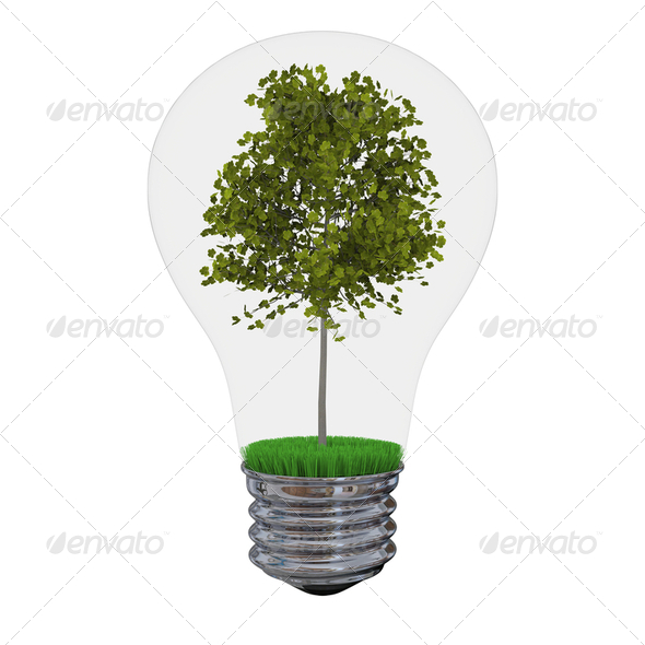 Tree inside lightbulb - Stock Photo - Images