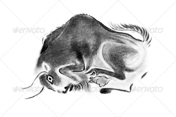 bull - Stock Photo - Images