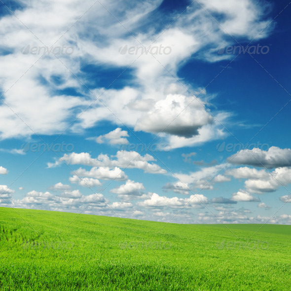 fields - Stock Photo - Images