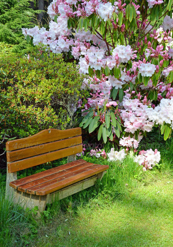 Garden bench - Stock Photo - Images