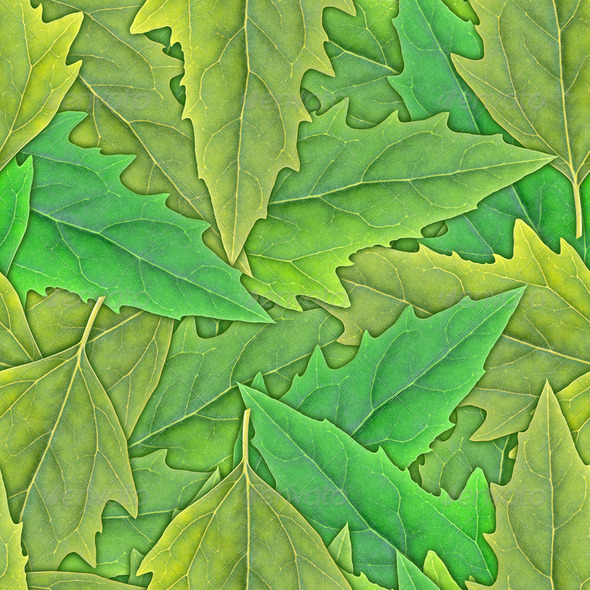 Seamless pattern of green leafs - Stock Photo - Images