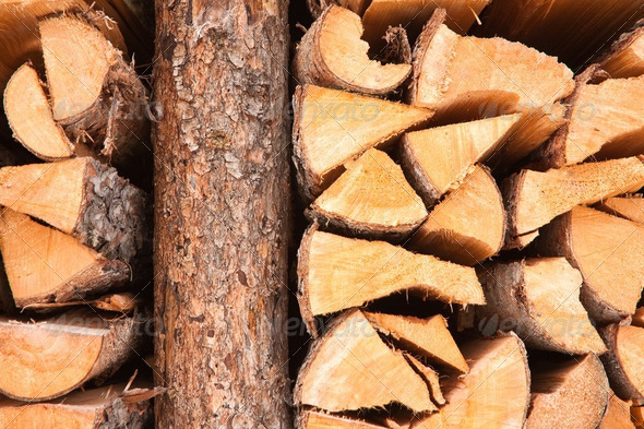 Firewood stacked in a pile - Stock Photo - Images
