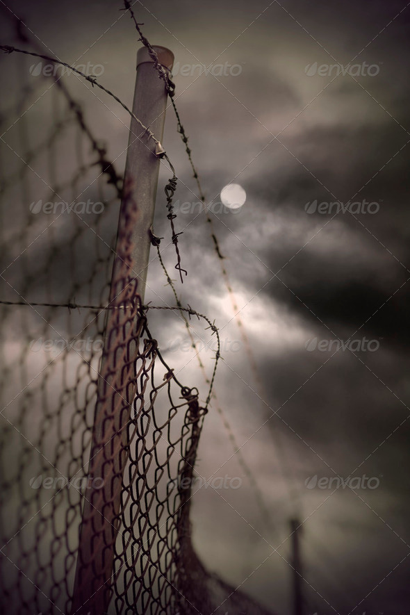Barbed wire in evening - Stock Photo - Images