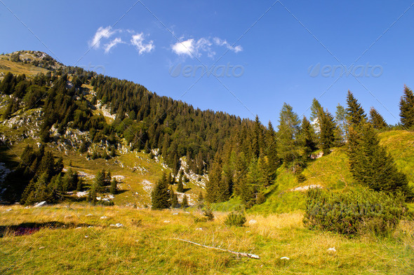 Krn mountain - Stock Photo - Images
