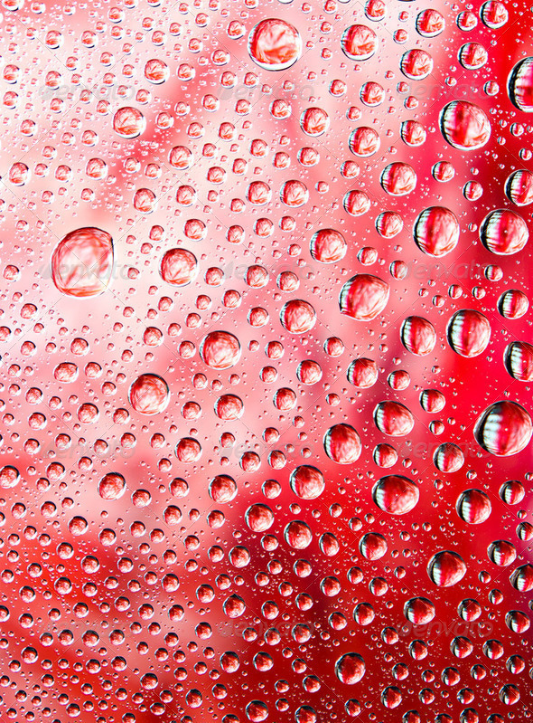 Water drops on red background - Stock Photo - Images