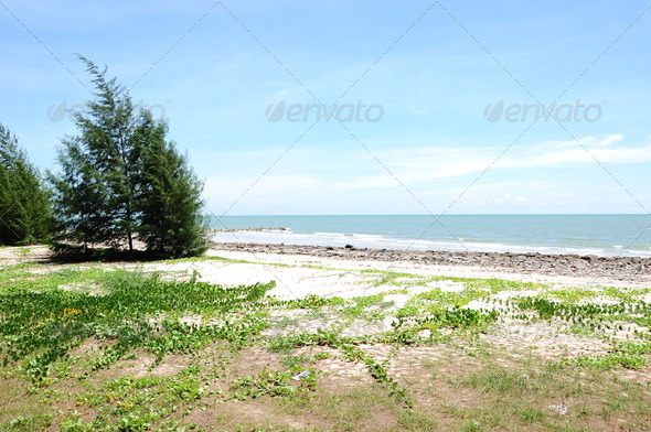The beach , Huahin Thailand - Stock Photo - Images