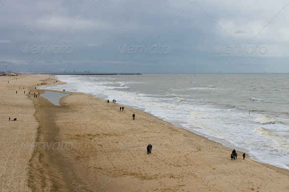 Autumn Beach in The Hague. Netherlands. Den Haag - Stock Photo - Images