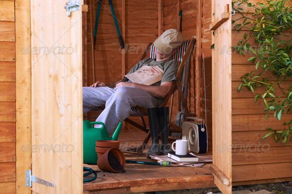 Asleep in shed - Stock Photo - Images