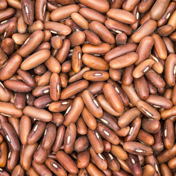Brown Beans Background - Stock Photo - Images