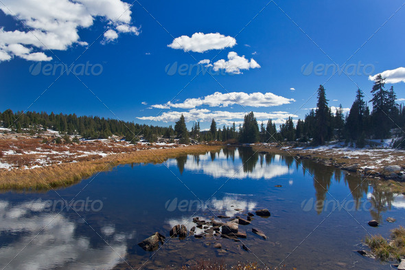 Yellowstone National Park: Beartooth Pass - Stock Photo - Images