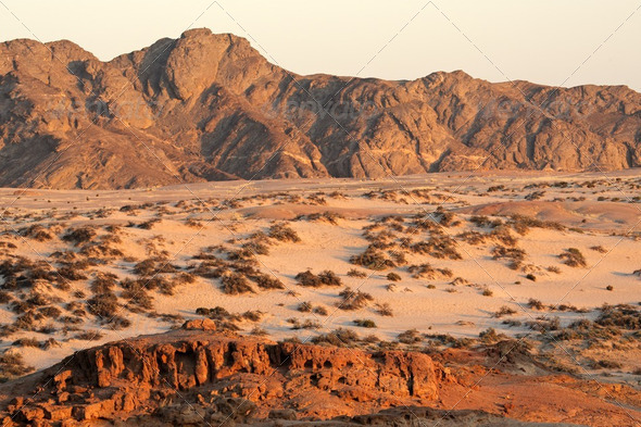 Namib desert - Stock Photo - Images