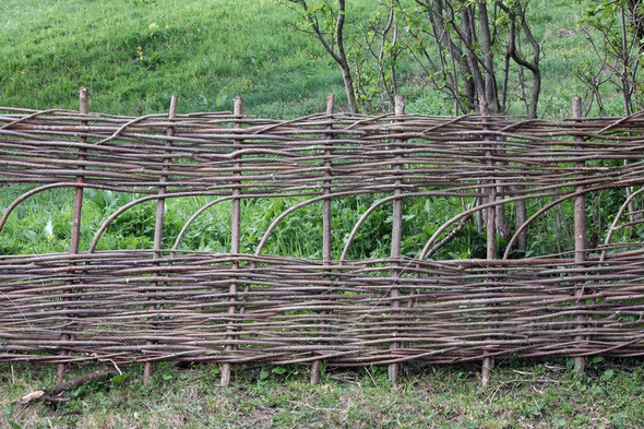 Wicker fence - Stock Photo - Images