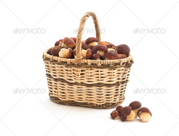 Basket full of cepe mushrooms and small pile on white background - Stock Photo - Images