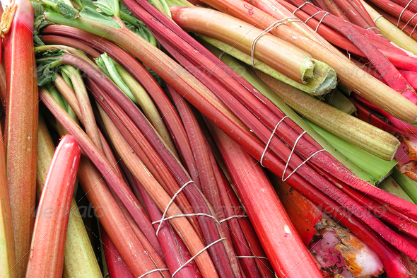 Rhubarb Raw Stalks Stems on Farmer Market Stand - Stock Photo - Images