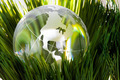 Globe and green grass - PhotoDune Item for Sale