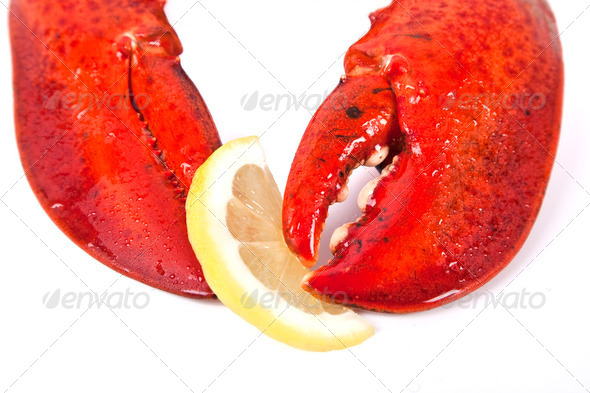Cooked Lobster - Stock Photo - Images
