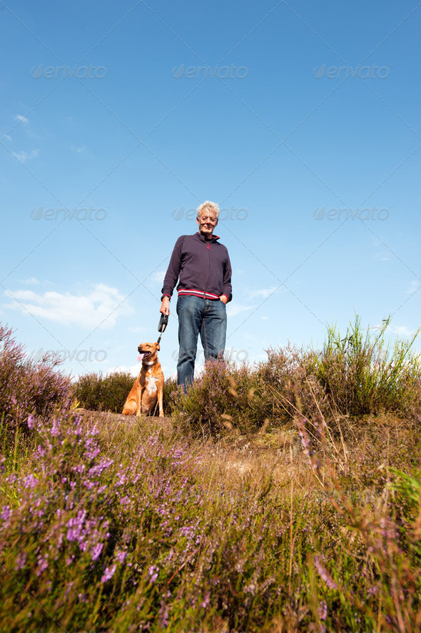 Heather landscape man and dog - Stock Photo - Images