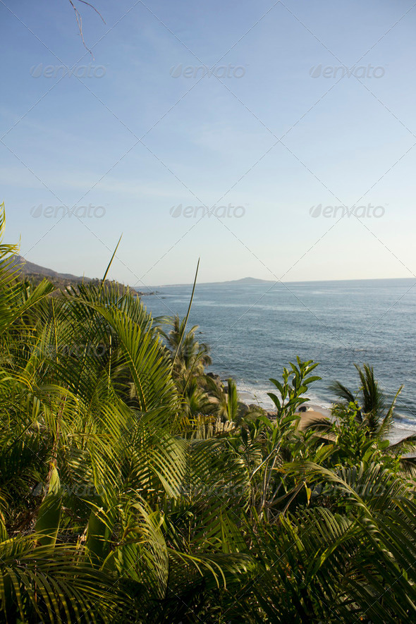 Looking at the ocean from high in the jungle - Stock Photo - Images