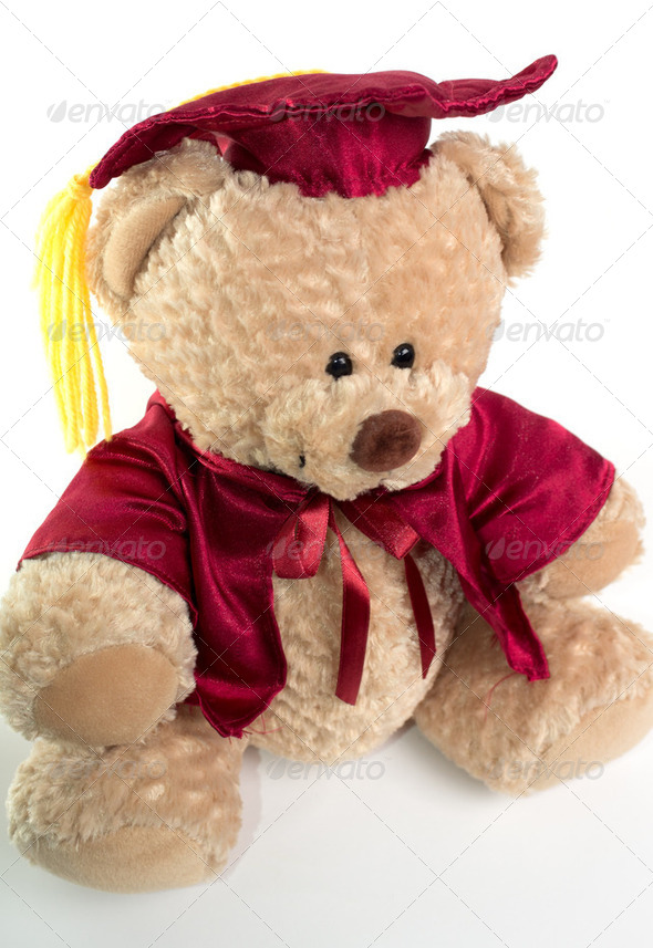 Graduation Teddy Bear - Stock Photo - Images