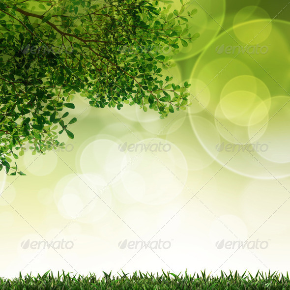Green grass and leave background with selective focus - Stock Photo - Images