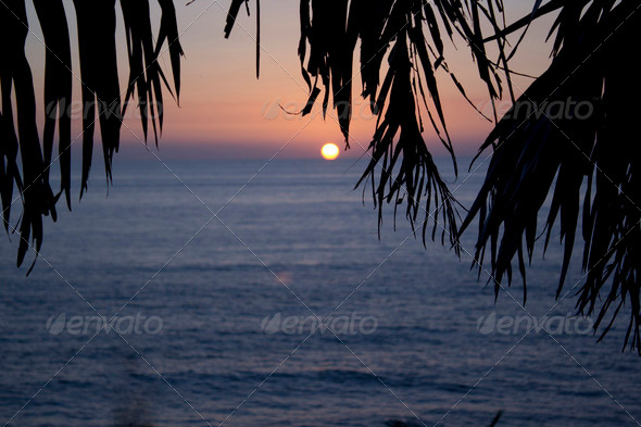 sunset in Mexico - Stock Photo - Images