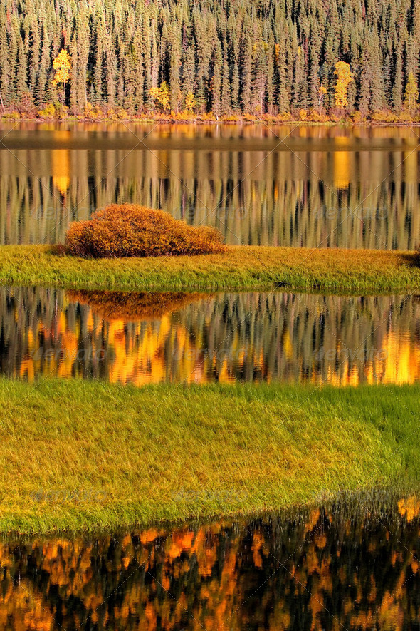 Water reflections in autumn - Stock Photo - Images