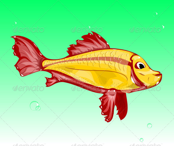 GoldFish - Stock Photo - Images