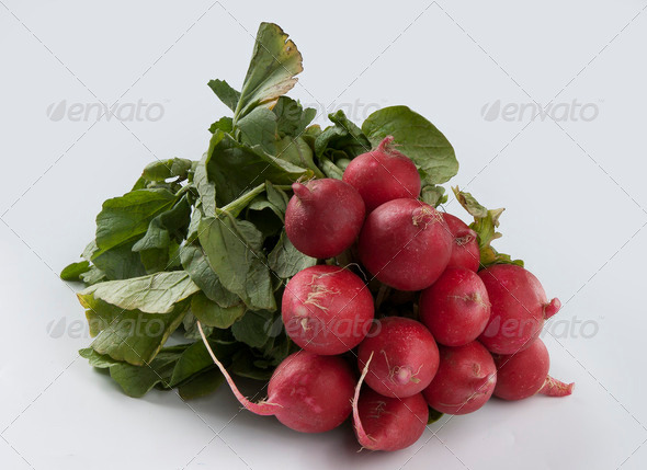 Radish - Stock Photo - Images