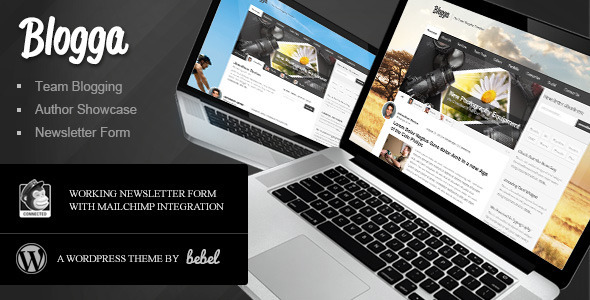 Blogga - Team Blogging for WordPress - News / Editorial Blog / Magazine