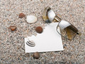 Shells, starfish ,blank paper sheet and sunglasses - PhotoDune Item for Sale