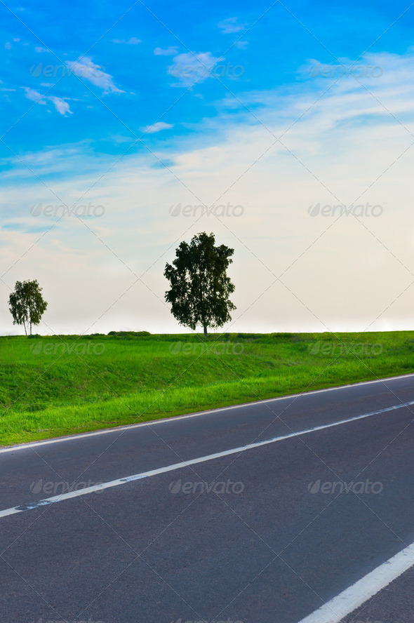 road and the meadows - Stock Photo - Images