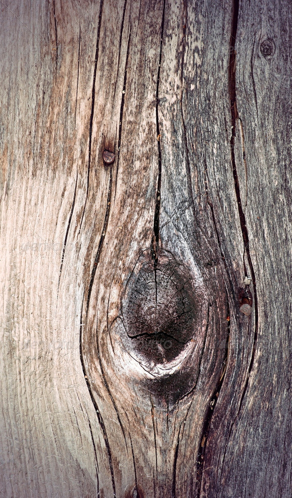 ancient knotted weathered wood - Stock Photo - Images